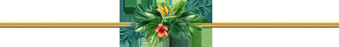 Line tropical phú quốc